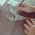Horn carving Workshops